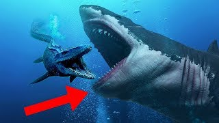 craziest-facts-about-the-megalodon-shark
