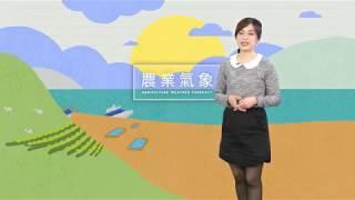 農業氣象1080222