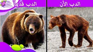 7 حيوانات أجبرت على التطور بسبب الانسان !