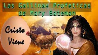 Las Gallinas Profetas de Mary Bateman