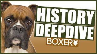 BOXER HISTORY DEEPDIVE