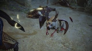 Path of Exile: Trilling Wolpertinger Pet