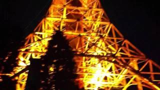 Tokyo Tower - Japanese Eiffel Tower. Nov 2011 ( #1 )
