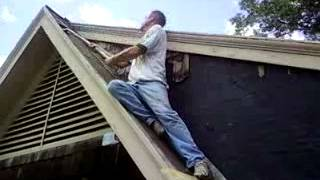 Me & Beau removing asbestos