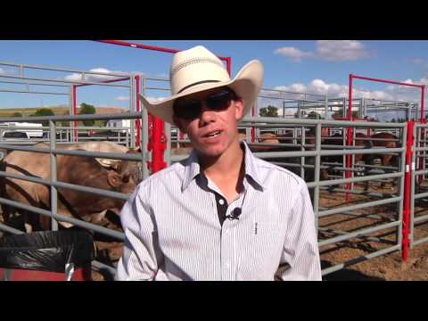 Melstone High School Rodeo Champion
