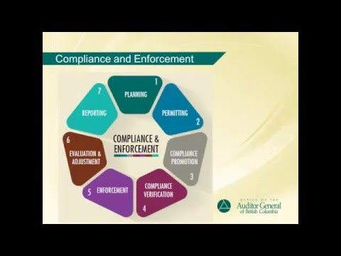 Audit of Compliance and Enforcement of the Mining Sector