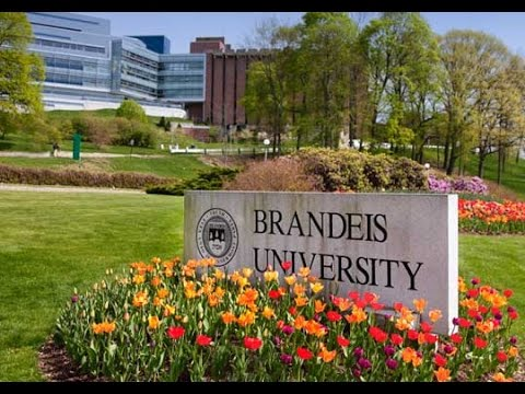 Skype with Brandeis University on March 21, 2017
