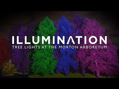 Illumination: Tree Lights at The Morton Arboretum 2018