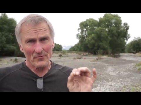 Artist describes NZs freshwater crisis