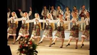 Sarba moldoveneasca - Instrumental (by silver) D