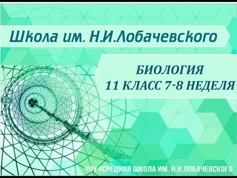 Биология | Подготовка к олимпиадам | 10-11 класс