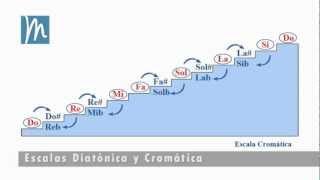 La escala cromática explicada en 7 minutos - Tonos y semitonos