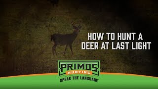 How to Hunt a Deer Coming Out at Last Light