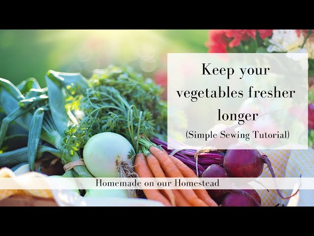 How to keep your vegetables fresher longer | HOW TO SAVE MONEY BY REDUCING FOOD WASTE