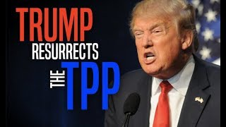Trump Wants to Rejoin the TPP