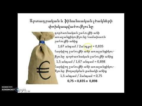 Financial leverage Armenian