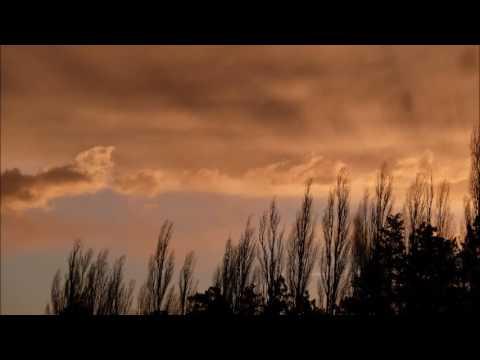 Ritterliche Werbung, Gedicht von Eduard Mörike, Lesung vom Vorleser