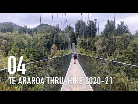TE ARAROA THRU-HIKE 2020-21: Hamilton to Taumarunui (E 04)