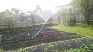 Внесение фитоспорина м в почву через систему полива.