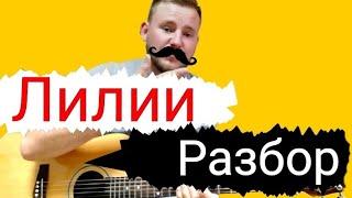 Лилии АМИРХАН МАСАЕВ чеченский бой, разбор песни на гитаре