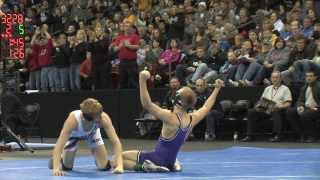 2014 Wisconsin Individual State Wrestling Tournament