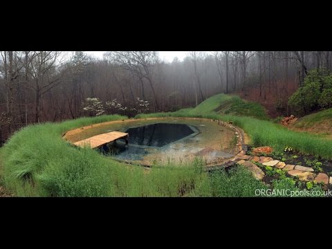 Diy Inground Pool >> How to make a Natural : Organic Pool in America - YouTube