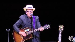 Elvis Costello performs at the Jazz Festival
