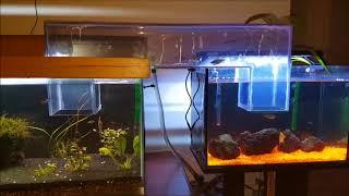 Aquarium water bridges (PVC and glass)