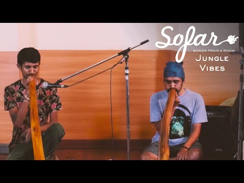 Jungle Vibes - Didgeridoo Music | Sofar Bangalore