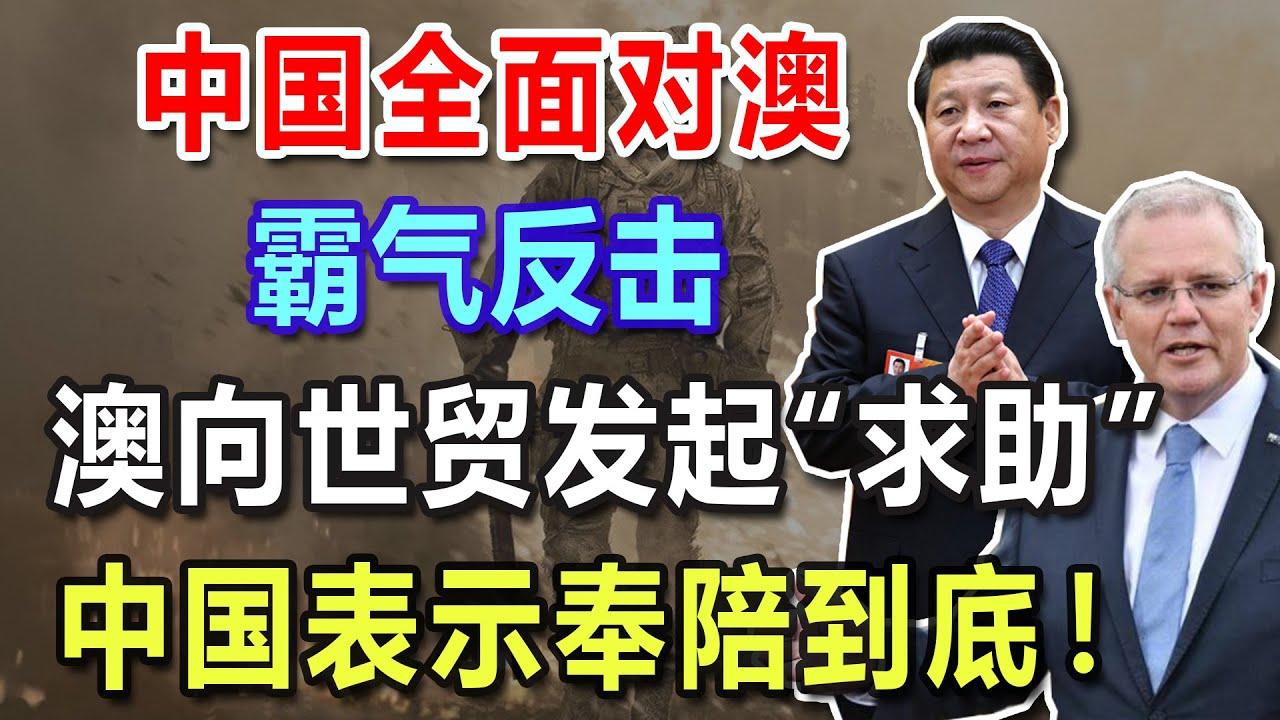 """中国全面对澳,霸气反击!澳向世贸发起""""求助"""",中国表示奉陪到底!"""
