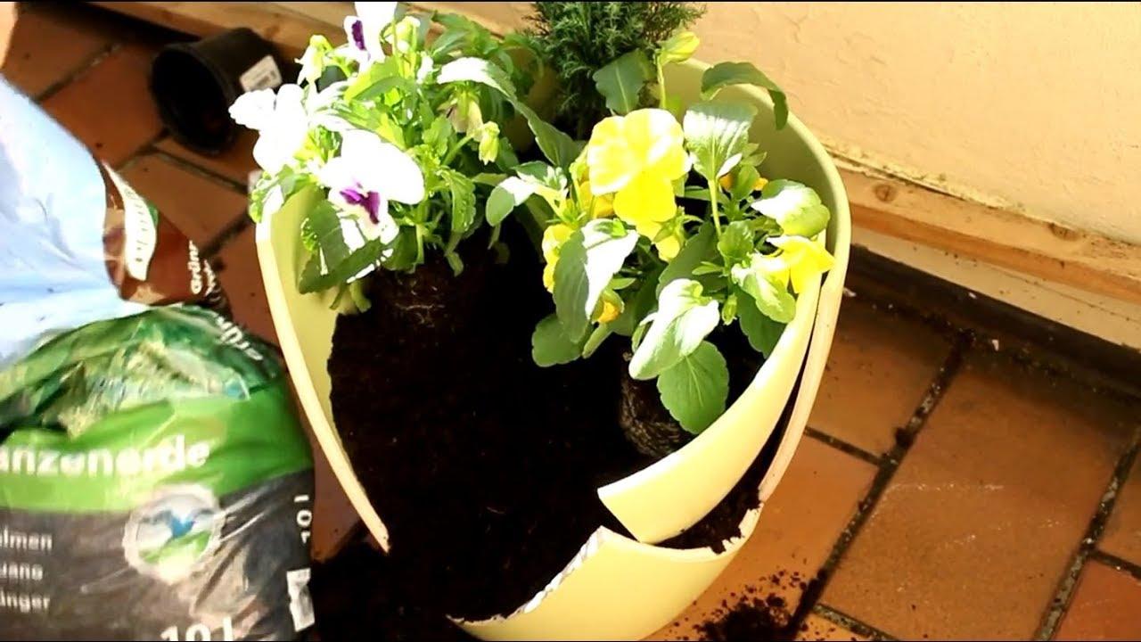Deko Ideen mit Pflanzen für Terrasse ! - Deco Ideas with Plants for Terrace  !