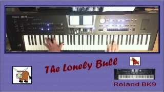 The Lonely Bull - Roland BK9