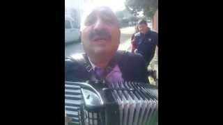 cu acordeonul prin Tataranu - fetele de la sibiu  :)))