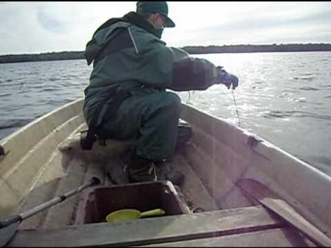 Kalaverkon Ankkurointi