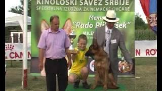 Memorial Rado Plibersek 2009, Nemacki Ovcari-german Shepherd Dog