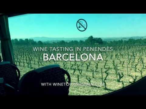 Wine Tasting & Vineyard Touring in Barcelona's Penedès Wine Region