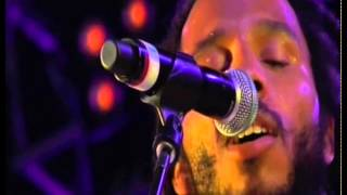 Reggae in My Head - Ziggy Marley | Live at Rototom in Benicassim, Spain (2011)