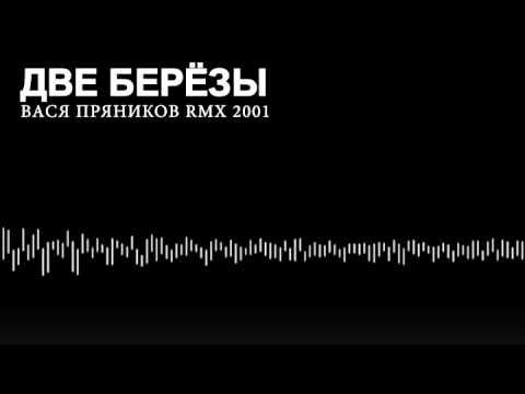 ВАСЯ ПРЯНИКОВ ДВЕ БЕРЁЗЫ / RMX 2001