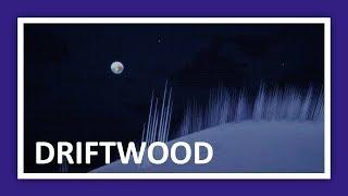 Driftwood : La nuit est calme | Low Poly
