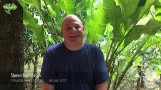 Steve's testimonial