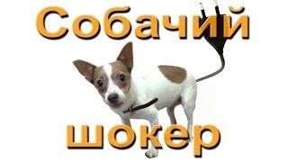 Собачья жизнь. Как отучить собаку лаять(Ремонтируем собачий шокер. Самый гуманный способ отучить собаку тявкать. Электро шокер срабатывает от..., 2014-02-02T10:54:08.000Z)