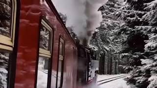 magic christmas train