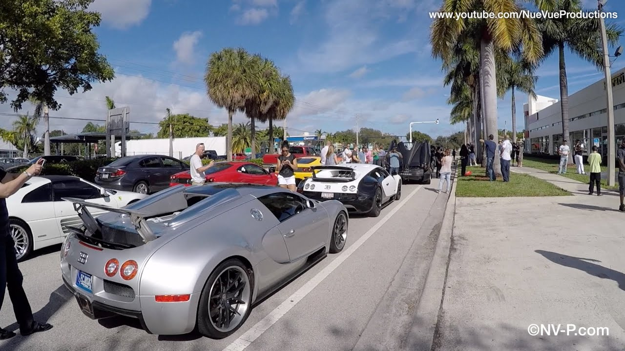 250 Exotic Cars For Toy Rally Toys For Tots South Florida 2014