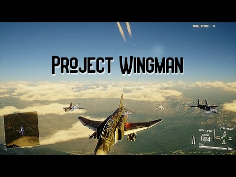 Man this game is CLEAN / Project Wingman Gameplay  