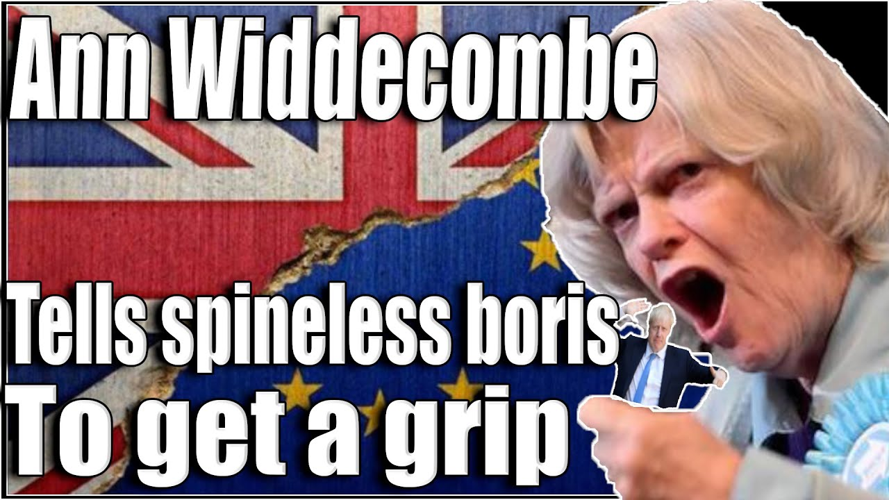 Ann Widdecombe hits boris with a major truth bomb