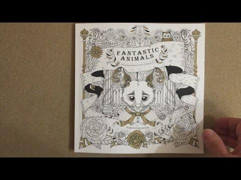 Fantastic Animals Coloring Book Of Journey Through Dreams Flip