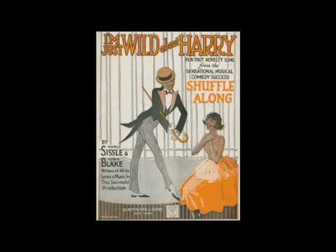 I'm Just Wild About Harry (1921)