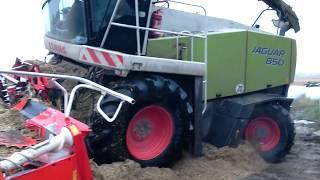 Sieczkarnie kukurydzy Claasy Jaguary zakopane po ramy!/ Mais in the mud 2017/ Häcksler im schlamm
