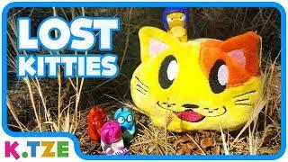 K.Tze sucht die LOST KITTIES