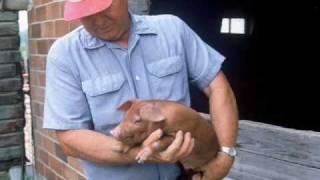 Meet The Farmers At Niman Ranch